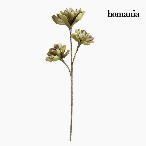 Flor Espuma Morado Verde by Homania