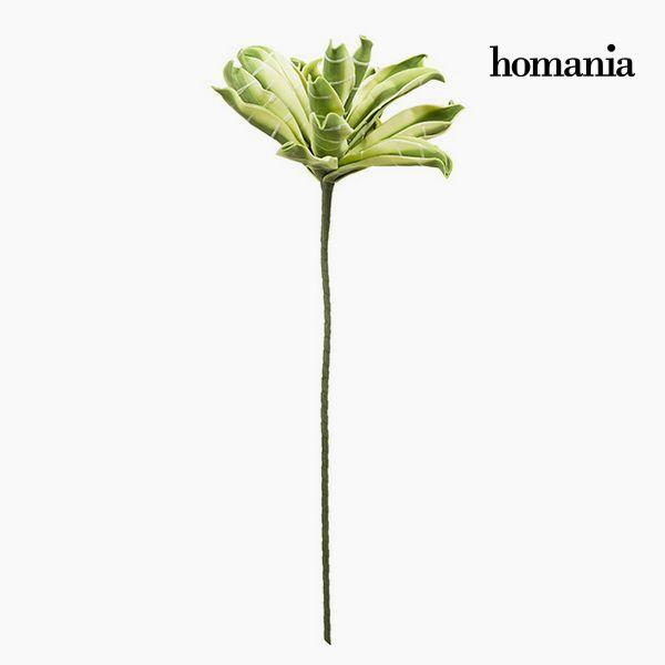 Flor Espuma Verde by Homania